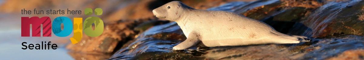 mojo-sealife.jpg
