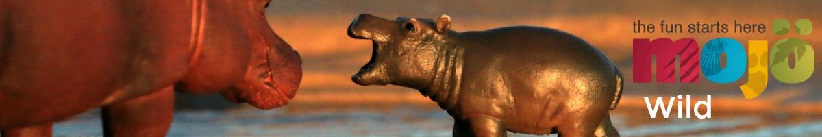 mojo-wild-hippos.jpg