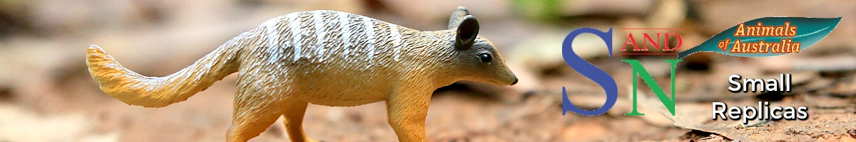science-and-nature-animals-of-australia-small-replicas.jpg
