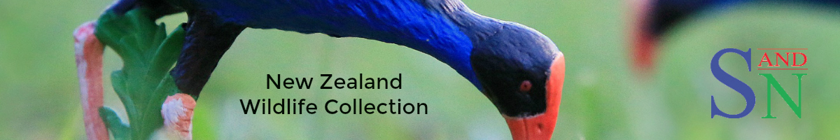 science-and-nature-new-zealand-collection.jpg